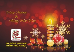 thiep giang sinh 1